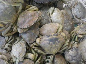 Bisque-crabes-verts4