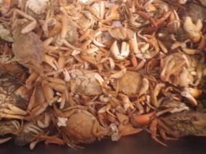Bisque-crabes-verts5